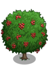 Lychee2-icon