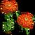 Orange Zinnia-icon