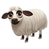 Daglic Sheep