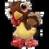 Baby Wild Turkey