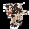 Baby Holstein Cow