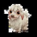 Baby Angora Goat.png