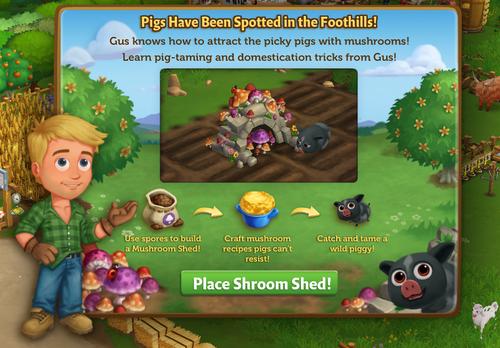 Mushroom Shed start