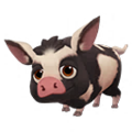 Black Pink Spotted Ossabaw Pig.png