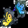 2 butterflies.png