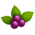 Beautyberry.png
