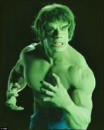 Marvel Comics - The Hulk as protrayed by Lou Ferrigno