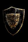 File:Crusader Shield.png