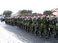 0076Lib Day Parachute Regiment