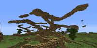 Wooden Tendrils