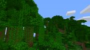 Jungletrees