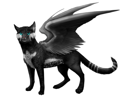 File:FELIFINCH.png