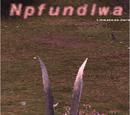 Npfundlwa