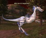 Atrociraptor