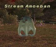Stream Amoeban