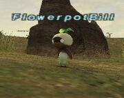 FlowerpotBill