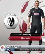 Freiburg alternatve
