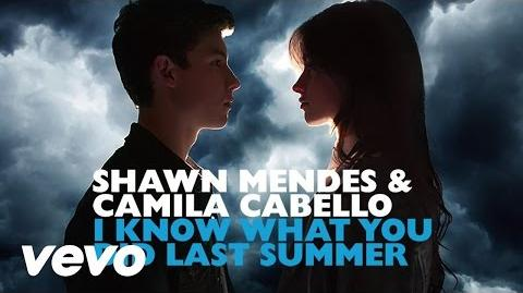 Shawn Mendes, Camila Cabello - I Know What You Did Last Summer (Audio)