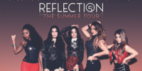 Reflection: The Summer Tour