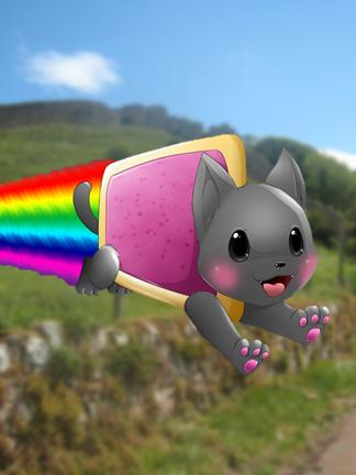 File:NyanCatCastPic.png