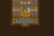 FFV Tule Magic Shop