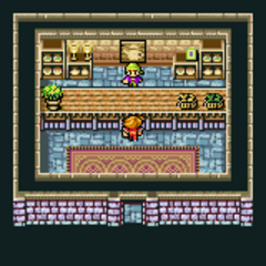 Cornelia's item shop (GBA).