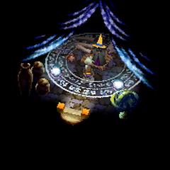 Magic shop (DS).