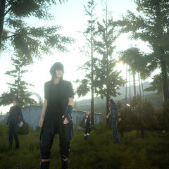 Noctis and the party in Duscae.