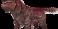 Lindbur Wolf