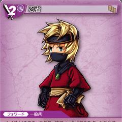 13-157C/5-114C Ninja (Ingus)