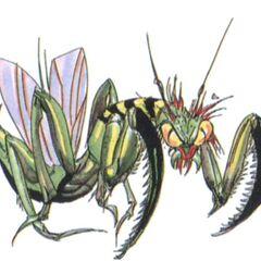 Mantis (full-colored).