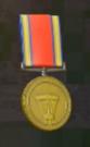 LRFFXIII Gold Medal