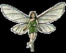 Fairy FF1