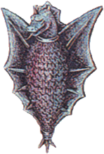 Dragon Shield FFII Art