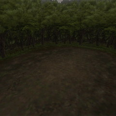Another forest background on the world map.