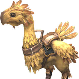 Rental Chocobo.