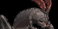 Wamouracampa (Final Fantasy XI)