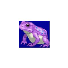 Frog portrait for Yang in <i><a href=