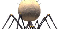 Spider (Final Fantasy XI)