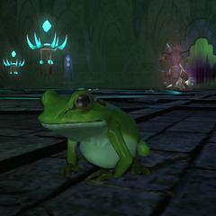 A player character as a toad in <i><a href=