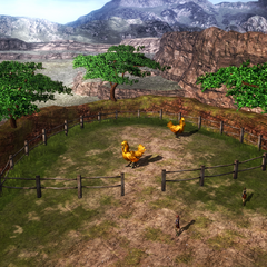 The chocobo ranch.