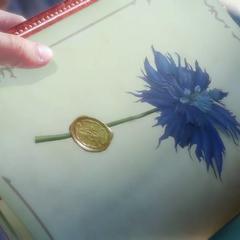 A pressed sylleblossom in the book.