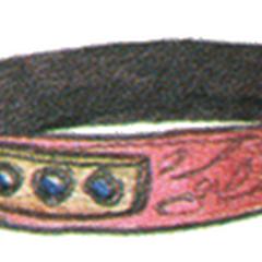 Chakra Band