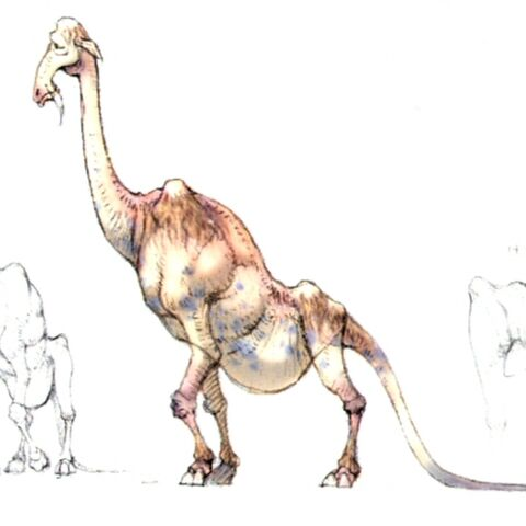 Concept art of a dhalmel.