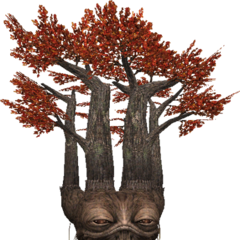 Autumn treant.
