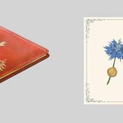 Concept art of Luna's notebook.
