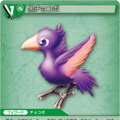 13-076C/4-036C Black Chocobo