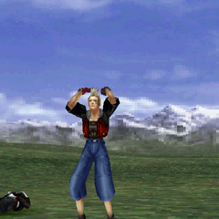 Zell's victory pose.