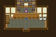 FFV Carwen Magic Shop.png