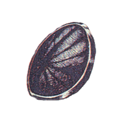 Official art of Bronze Shield from <i><a href=